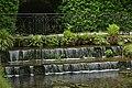 Mini-cascades et végétation (28874072032).jpg