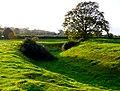 Moat near Cudworth - geograph.org.uk - 1548795.jpg