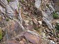 Monte Frerone 02.jpg