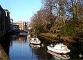 Moorings on River Dart,Totnes - geograph.org.uk - 341766.jpg