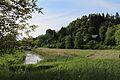 Moorwiesen bei den St.-Peter-Weihern-4.jpg
