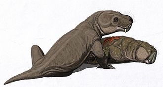 Akidnognathidae - A Moschorhinus with its prey.