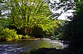 Moses Cone Park.jpg