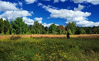 Cherry Valley National Wildlife Refuge - Image: Mountaintop Meadow (3) (8017824601)