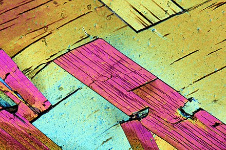 Tabular muscovite crystals in a gneiss in thin section viewed under cross-polarized light at 2x magnification.