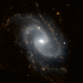 NGC 2989 HST 7919 0c R190n160.png