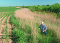 NRCSIA00044 - Iowa (2291)(NRCS Photo Gallery).tif