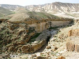 a ravine cut by a wadi which runs in the northern Judean Desert to the Dead Sea