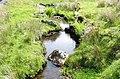 Nant Figyn-felen, a tributary of Afon Cymerig - geograph.org.uk - 467781.jpg