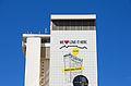 Naspers Centre WDC 2014.jpg