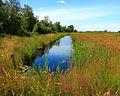 Nationaal Park De Alde Feanen. Locatie, It Wikelslân 026.JPG