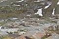 Nationalpark Hohe Tauern - Gletscherweg Innergschlöß - 47 - Blick vom Gletscherschliff zurück zur Brücke.jpg