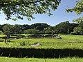 Nature Observation Pond in Suwa Park in Omuta, Fukuoka 2.jpg