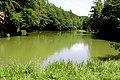 Naturschutzgebiet Hardt Wasserpanorama weit.jpg