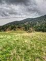 Near Andalo - Andalo (TN) Italy - April 30 2012 - panoramio.jpg
