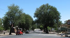 Newstead Lyons Street.jpg