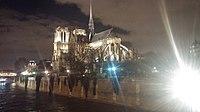 Notre Dame at night by Renata.jpg