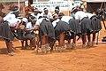 Ntjilenge Kalanga traditional group 8.jpg