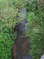Nučický potok nedaleko ústí do Sázavy.JPG
