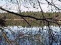 Nuuksio. Kattilajärvi. Foto by Victor Belousov. - panoramio (3).jpg