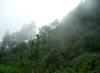 Oaxaca regiones sierra sur.png