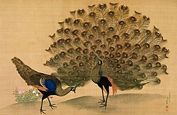 http://upload.wikimedia.org/wikipedia/commons/thumb/c/ca/Okyo_Peacock_and_Peahen.jpg/250px-Okyo_Peacock_and_Peahen.jpg
