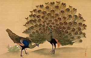 Maruyama Ōkyo - Peacock and Peahen; hanging scroll; color on silk