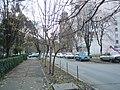 Oradea - panoramio - paulnasca (8).jpg