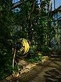 Osnabrück - Botanischer Garten - Tropenhaus - Innenansicht -BT- 06.jpg