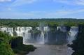 Pássaro nas Cataratas do Iguaçu - Paraná.png