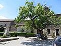 Pérouges - Eglise Sainte-Marie-Madeleine - place du Tilleul (17-2014) 2014-06-25 13.44.07.jpg