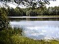Pļavu ezers 2004-06-23.jpg