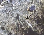 PIA18784-MarsCuriosityRover-HIRISE-MurrayRidgeFormation-20140911