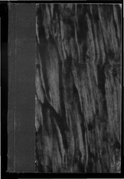 File:PL Hans Christian Andersen - Książka z obrazkami bez obrazków.djvu