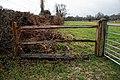 Paddock entrance on Sedgwick Lane, Nuthurst, West Sussex.jpg