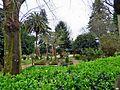 Padrón-Parque (17212436388).jpg
