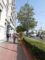 Panepistimiou Athens 4.JPG