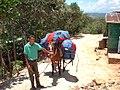 Paragliding, Jarabacoa (3053701130).jpg