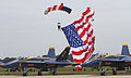 Paratrooper - 2010 Joint Service Open House and Airshow.jpg