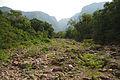 Parque Nacional de Aparados da Serra 13.jpg