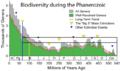 Phanerozoic Biodiversity-2.png