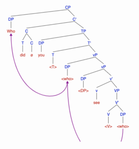 Phasal movement tree- step 1.png