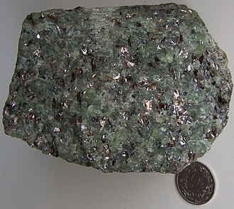 Phlogopite - Phlogopite bearing peridotite from Finero, Italy. Coin of 1 Swiss franc (diameter 23 mm) for scale. The phlogopites are the glittering minerals surrounded by the green groundmass of olivine.