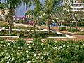 PikiWiki Israel 16189 kiryat gat.jpg