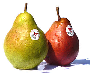 Williams pear - French red and green varieties