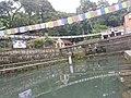 Pond in godawari 20170706 124956.jpg