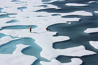 Sea ice - As ice melts, the liquid water collects in depressions on the surface and deepens them, forming these melt ponds in the Arctic. These fresh water ponds are separated from the salty sea below and around it, until breaks in the ice merge the two.