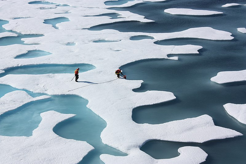 File:Ponds on the Ocean, ICESCAPE.jpg