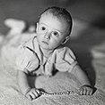 Portrett av prins Harald, 1937 - Portrait of prince Harald, 1937 (25064609375).jpg