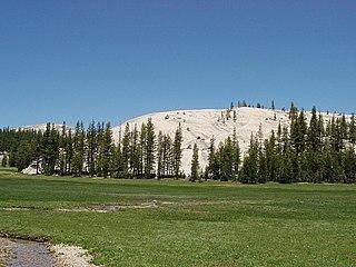 Pothole Dome Rounded bare granite hill in Tuolomne Meadows, Yosemite National Park, California, USA